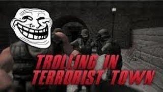 Trolling In Terrorist Town 1:PORN BUSTERS