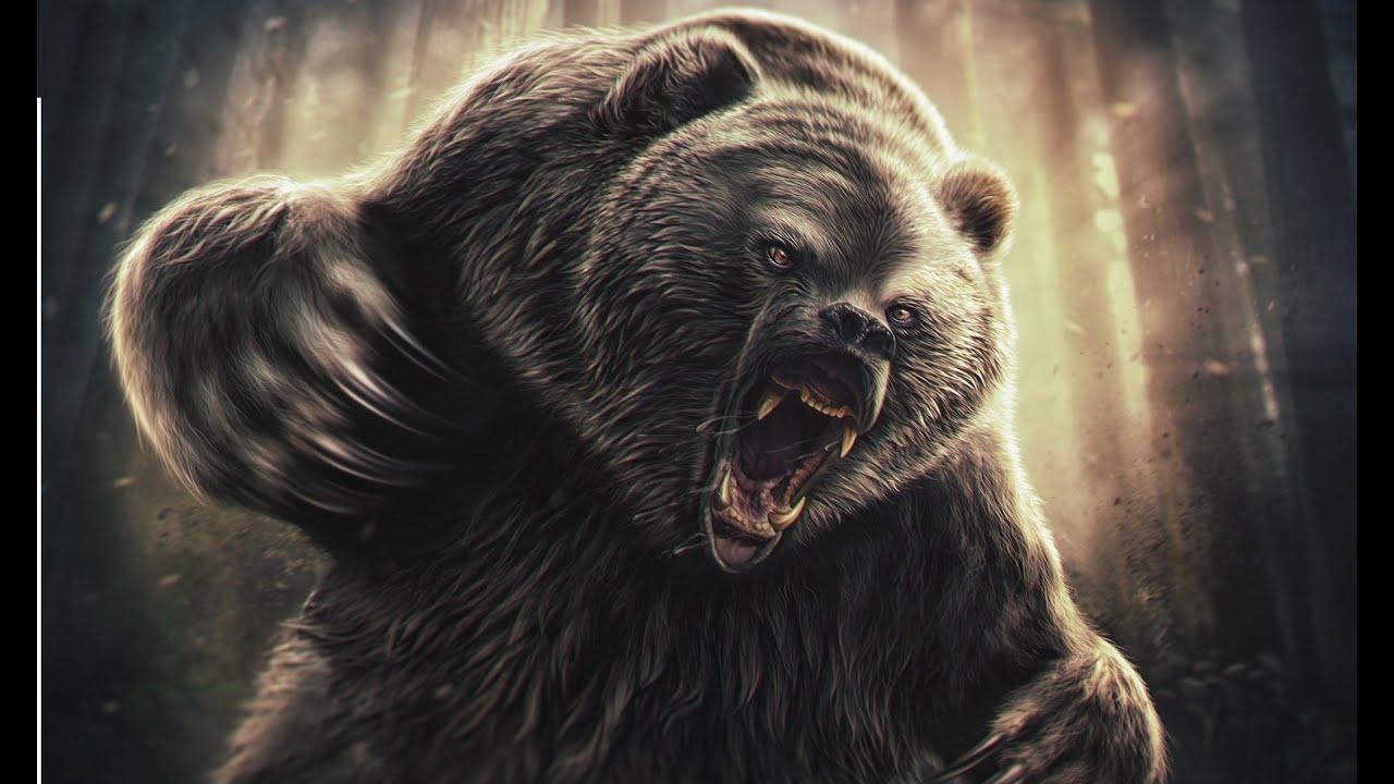 медведица картинки на аватарку