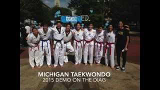 Michigan Taekwondo Fall 2015 Demo