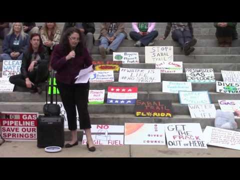 Solar and renewable energy --Kim Ross, Rethink Energy Florida