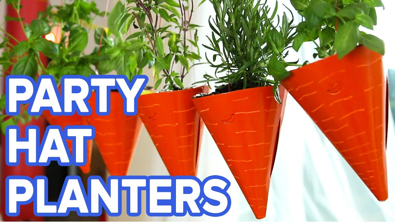 Hanging Party Hat Planters - YouTube on stove top hat, 3 musketeers hat, art hat,