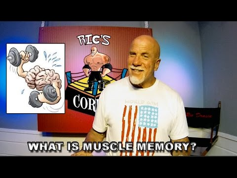 Muscle Memory , What is it? How does it pertain to Bodybuilding?