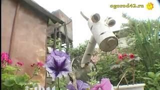 стиль кантри в ландшафте садового участка: идеи, хитрости, подсказки