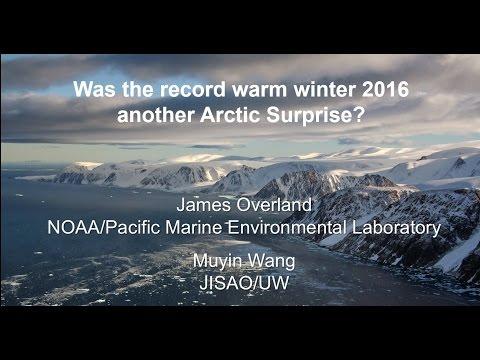 Run Away Arctic