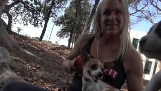 Спасение мамы и 3х щенков.