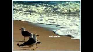 Praia da Tocha - Cantanhede