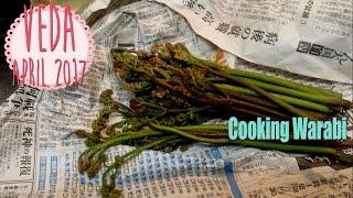 Cooking Warabi