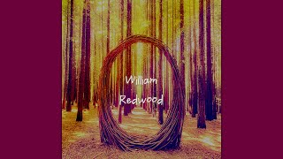 William Redwood - Long Long Time