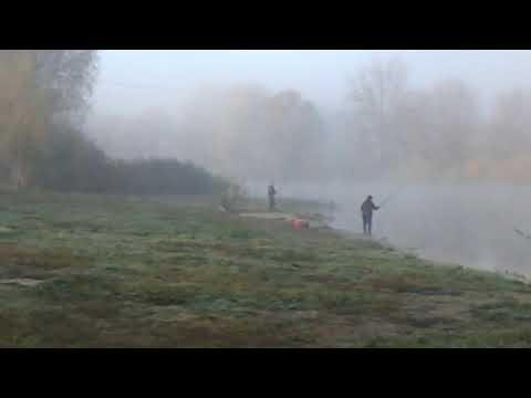 ObriIzyum: Туман. Ізюм. 18.10.19