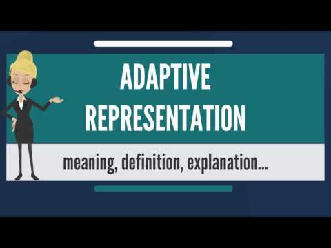 What is ADAPTIVE REPRESENTATION? What does ADAPTIVE REPRESENTATION mean?