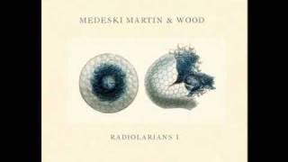 Medeski Martin & Wood - Reliquary