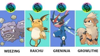 Pokemon Mega Evolution Weezing, Greninja, Arcanine, Raichu