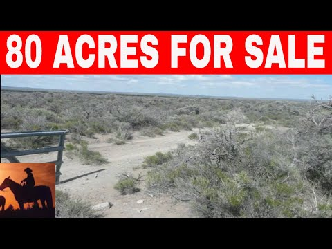80 Acres For Sale Oregon Owner Financing