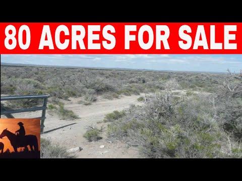 Oregon 80 Acres For Sale Owner Financing