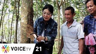 Tonight Thailand - กรีดยางโชว์! 'หญิงหน่อย' บอกชาวสวนยางรอนโยบายเพื่อไทย