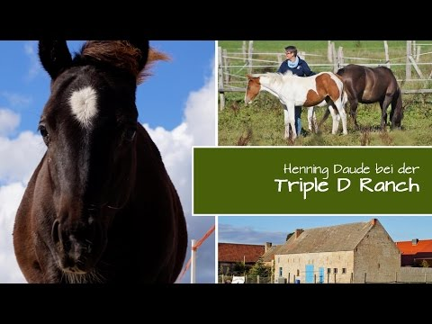 KURS DESSAU | Wiesenburg | Triple D Ranch | SEP 2015