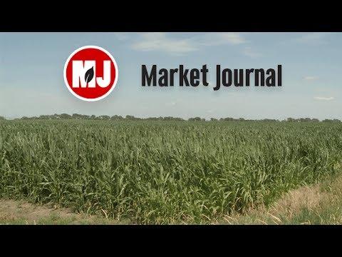 Market Journal - July 14, 2017 (full episode)