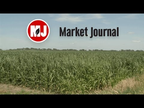 Market Journal - July 14, 2017 (full episode)