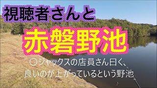 バス釣り視聴者さんと岡山赤磐の野池を短時間で巡ってきたよ!