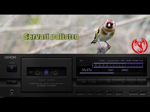 GRATUIT SERVATI CHANT TÉLÉCHARGER CHARDONNERET MP3