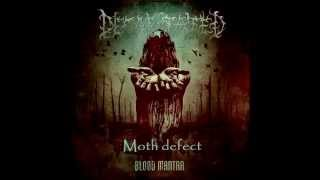 Decapitated - Moth defect (with lyrics)