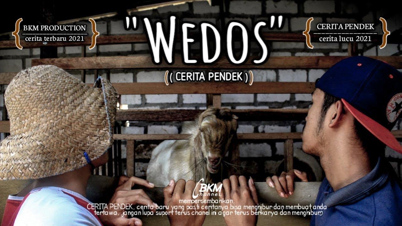 CERITA PENDEK - WEDOS