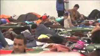 CDU: deutsche Jugend zur Zwangsarbeit für Illegale verpflichten!