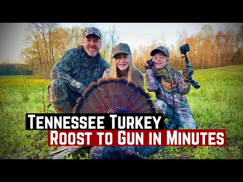 Turkey Hunting In Tennessee - Roost To Gun In Minutes - Called Series
