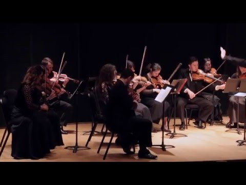 "Schubert-Mahler - String Quartet ""Death and the Maiden"" / Tsenov Chamber Ensemble"