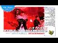 ベスト盤ダイジェスト映像『POP'N SOUL 20~The Very Best of NONA REEVES』