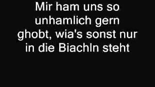 Wolfgang Ambros - Dei Foto (Lyrics)