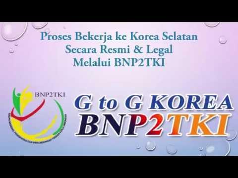 Proses Bekerja ke korea Selatan Secara Resmi