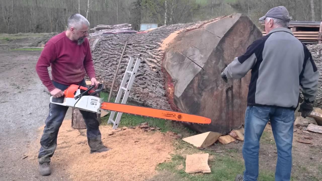 Stihl Ms 880 150cm Vs Big Oak Log Youtube