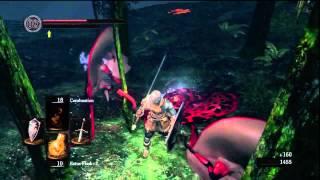 Dark Souls Farming Tutorial Walkthrough: Green Blossom