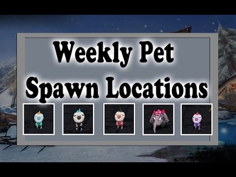 Weekly Pet Tutorial - Order & Chaos
