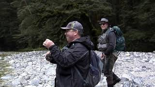 Fishing the Rough River for New Zealand Brown Trout