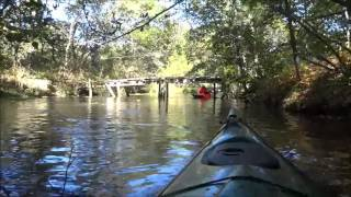 Kayaking The Herring River Estuary Of Wellfleet And Turo