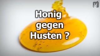 Honig gegen Husten - Mythos oder Wahrheit?