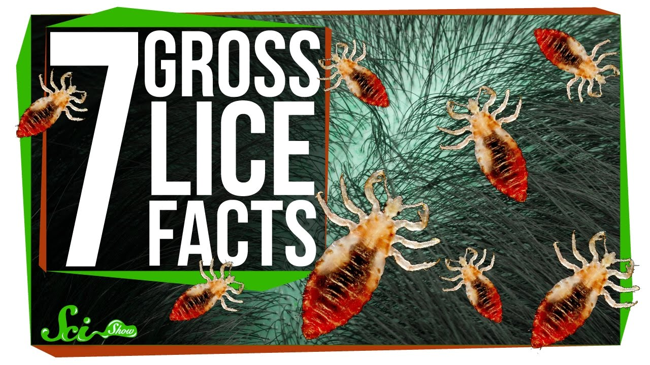 Discussion on this topic: 7 Super Gross Things That Happen When , 7-super-gross-things-that-happen-when/