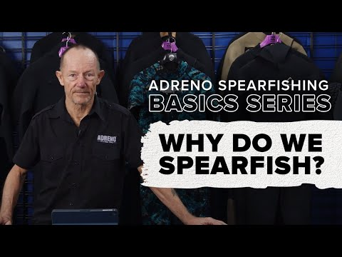 Why Do We Spearfish? Basics Of Spearfishing Part 1 | ADRENO