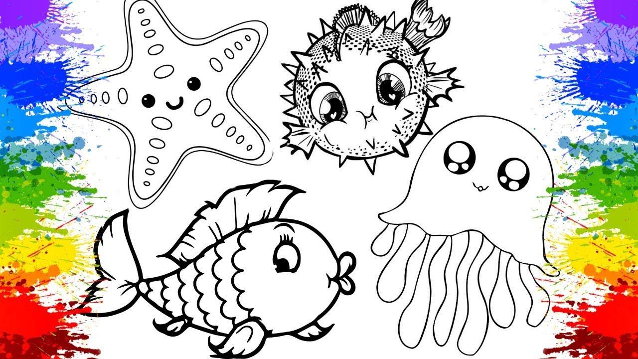 Colorindo Peixinhos Animais Para Educacao Infantil Videos