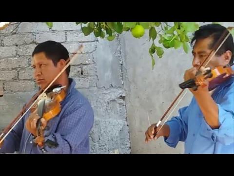 Musica tradicional de San Juan Mixtepec Jx Oax