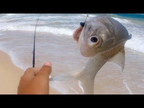 Drone Fishing - Ulua Fishing - Snake In Hawaii - Whipping