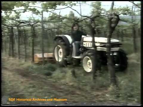 I nuovi trattori speciali Lamborghini 660 F - 775 F (1987)