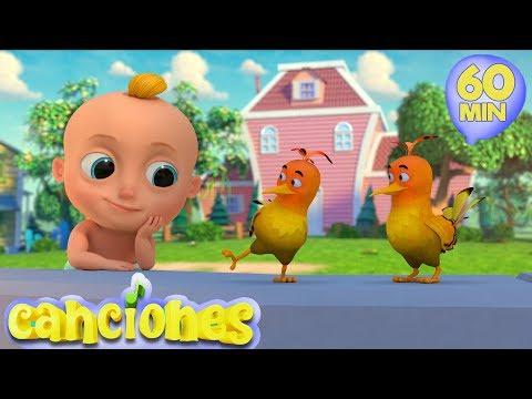 Loo Loo – Dos pajaritos – Cantece pentru copii in limba spaniola