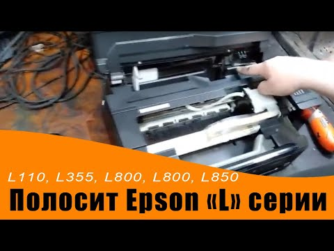 """Полосит Epson L222, L110, L355, L800, L800, L850 и другие """"L"""" серии."""