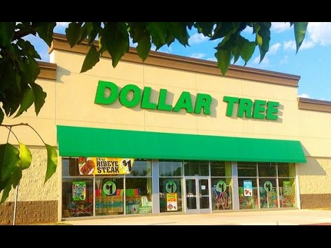Make Money With Dollar Tree Case Study