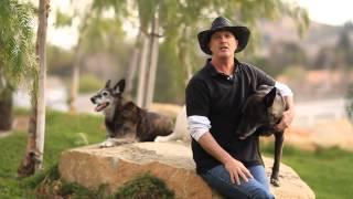 Doggie Boot Camp Video. Dominant Dogs — Leonard Ludovico. Stop Aggressive Behavior Orange County