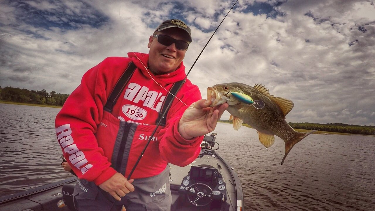Why Crankbaits Outperform Most Lures For Fall Bass On Rivers Youtube