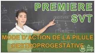 Mode d'action de la pilule combinée œstroprogestative - SVT - 1ère S - Les Bons Profs